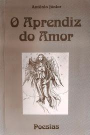 O APRENDIZ DO AMOR