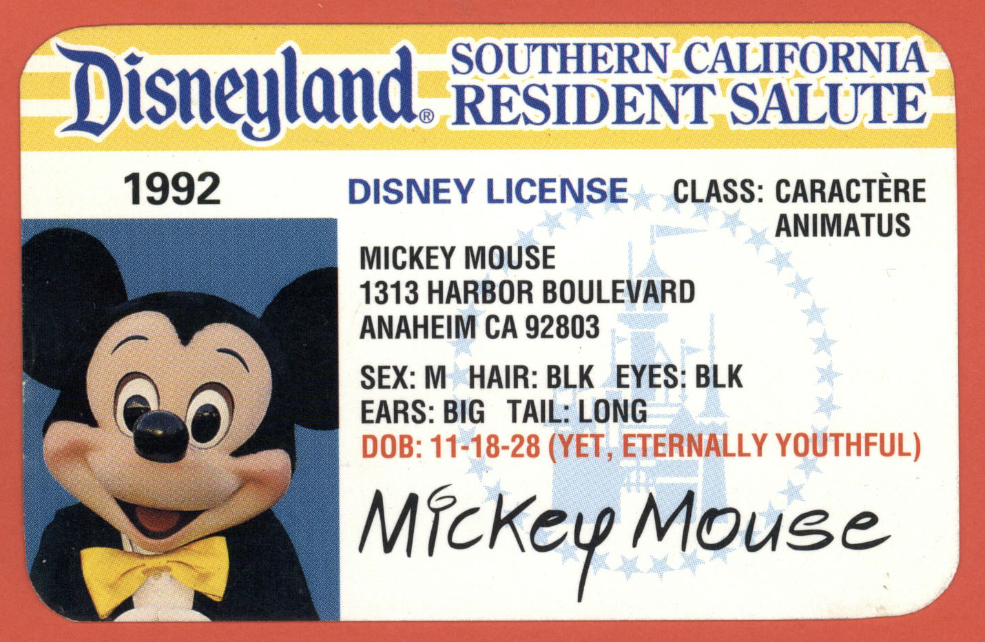 Image result for disneyland southern california ticket