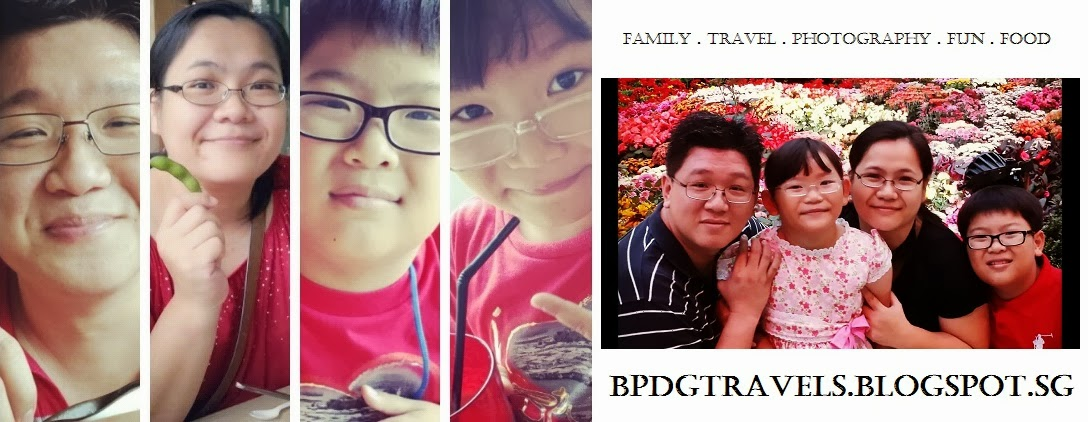 ~ The HENG Family Travel Blog ~