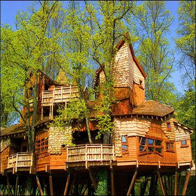 Home Design on Beautiful Tree Houses   Prime Home Design  Beautiful Tree Houses
