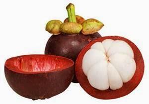 Berbagai macam manfaat kulit manggis untuk kesehatan