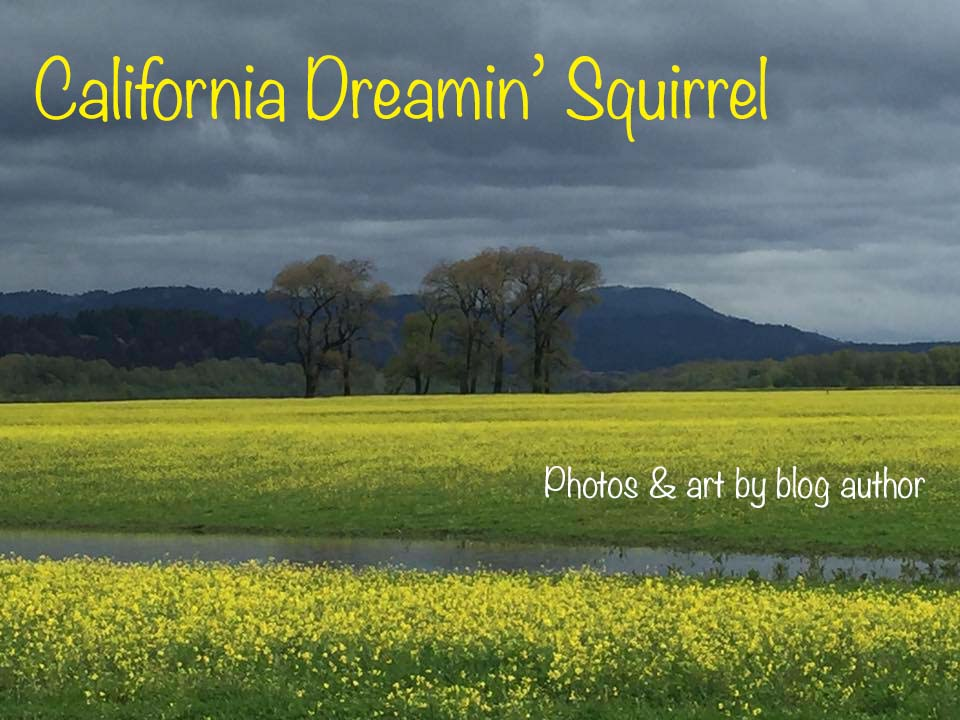 California Dreamin' Squirrel