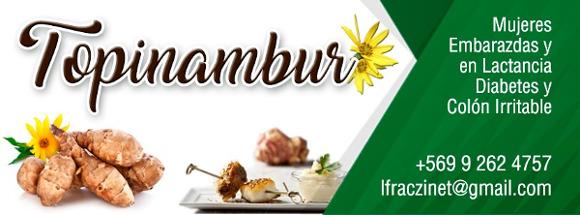 Topinambur - Alimentación Sana Para Diabéticos