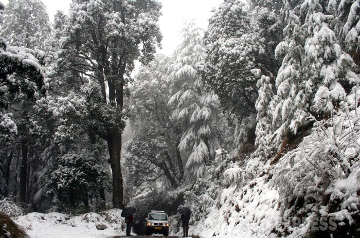 Himachal: Land of the Snows