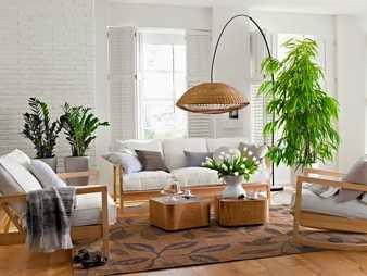 Living con plantas de interior