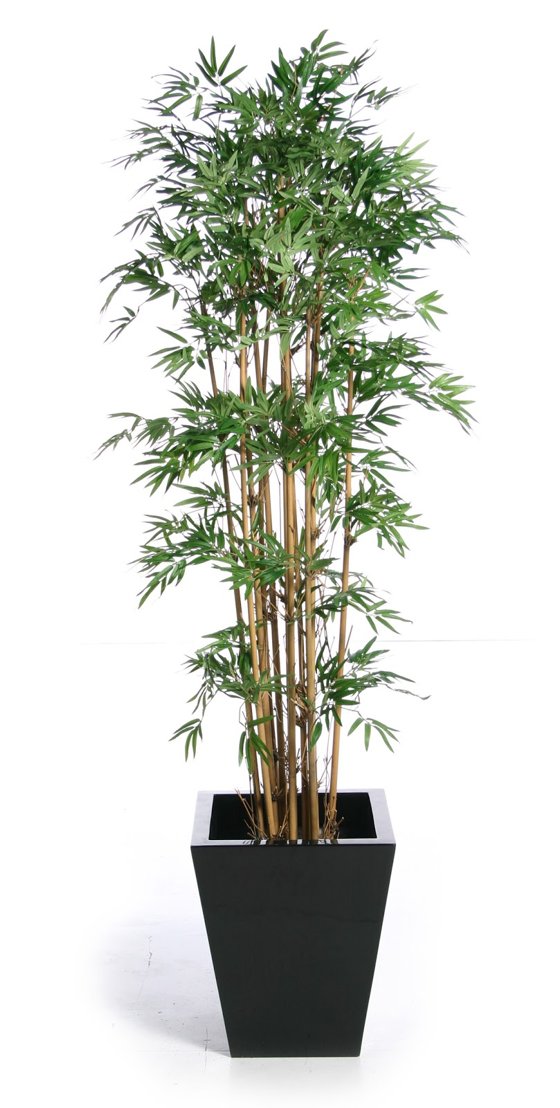 Bamboo artifiacl plants bamboo craft photo for Faux bambou plante