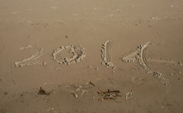 2014 in sand