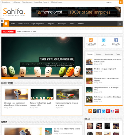 Awesome Premium WordPress Themes