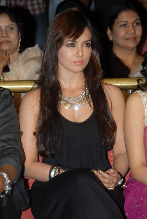 sana khan at mr nokia audio launch, sana khan new actress pics