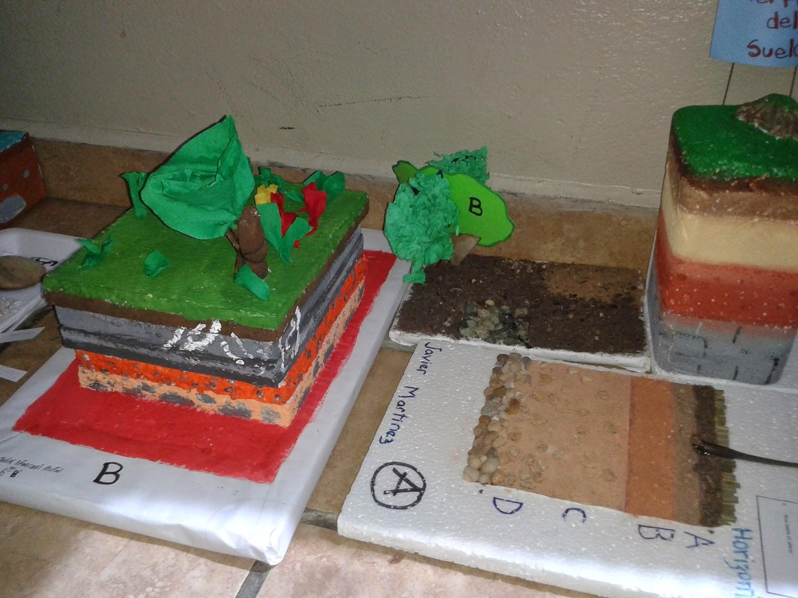 Maestra mayerling velazquez maquetas del perfil del suelo for Materiales para suelos