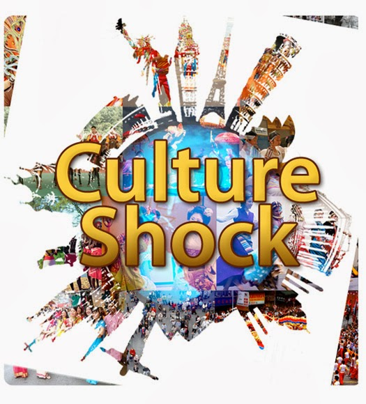 Essays On Culture Shock