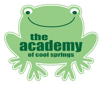 Meet Ace the Frog!  (Academy Children Excel)