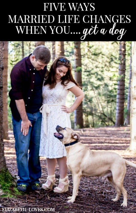 A look at how married life changes when dogs become part of the family.