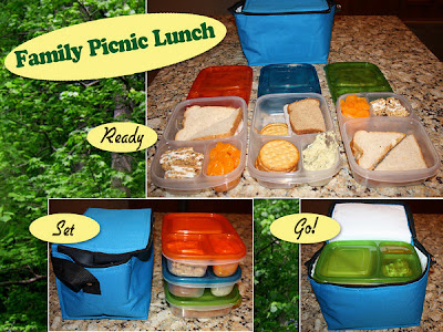 Family picnic, romantic surprise, healthy meals