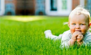 8 Aylık Bebek, 8 Aylık Çocuk