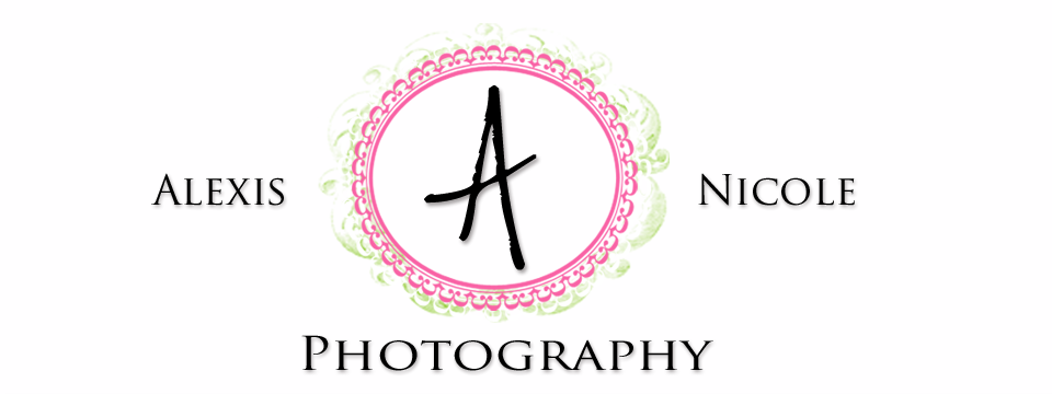 Alexis Nicole Photography