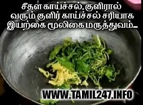kulir kaichal kunamaaga natural medicine, home remedies in tamil