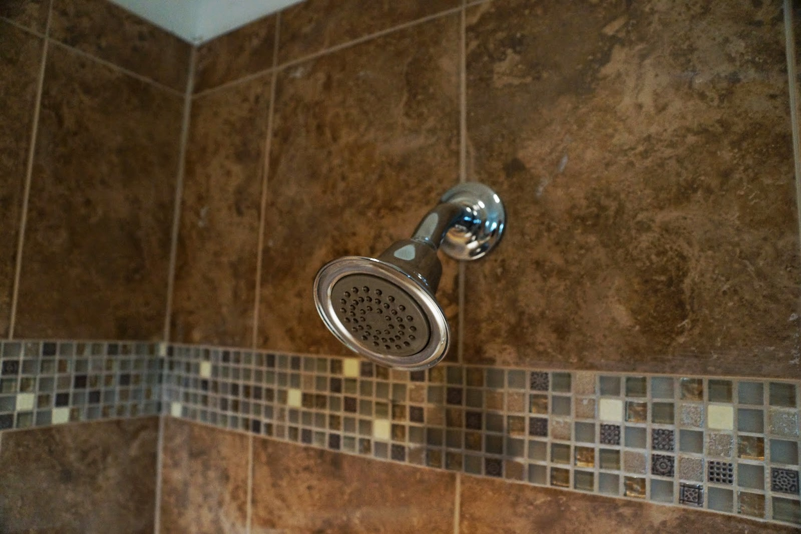 Close up picture of the master bathroom shower head