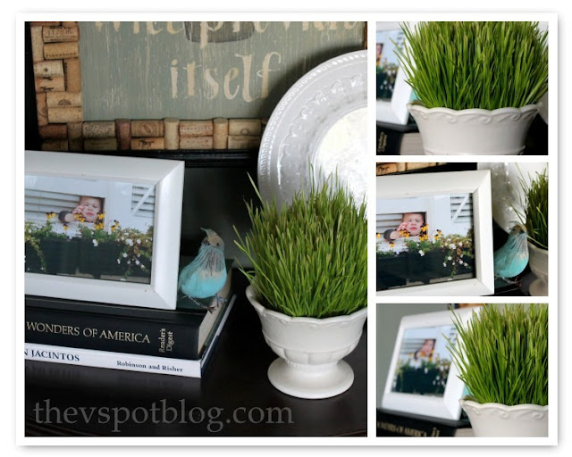 decor, photos, wheat grass, bird, frames, blue