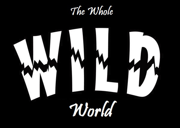 The Whole WILD World!