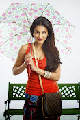 Shruti Haasan glam Pics for Poojai movie-thumbnail-7