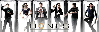 bones tv series dvd Download Bones S09E09 9×09 AVI + RMVB Legendado