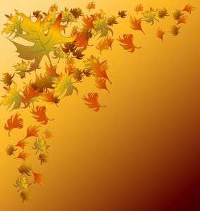 GRAPHIC'S LEAVES DOOR WALLPAPERS