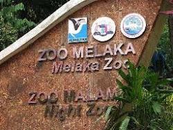 Klik : Zoo