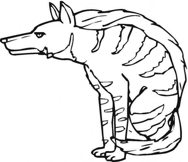 animal printable scary hyena coloring sheet scary hyena coloring pages