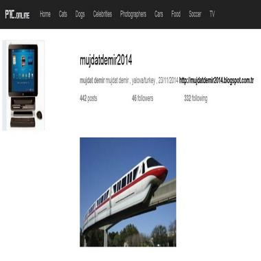 p1c online - mujdatdemir2014