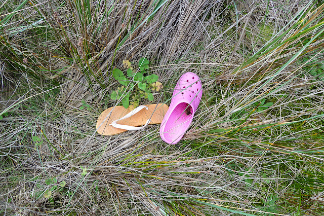 shoes lying in grass