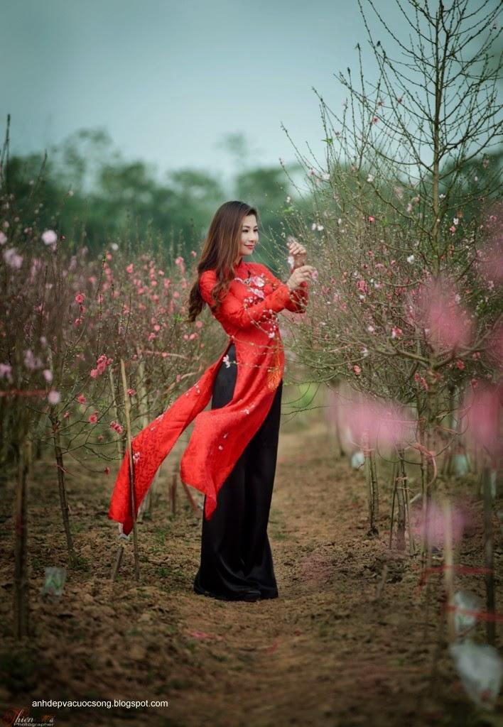 Người đẹp dạo phố hoa đào 1
