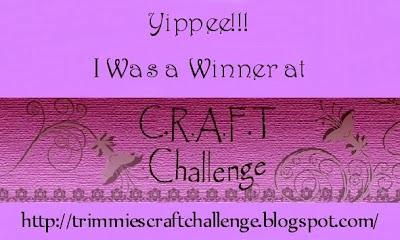 Wygrałam w CRAFT Challenge