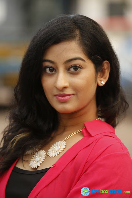 Actress Thanishka hot photos