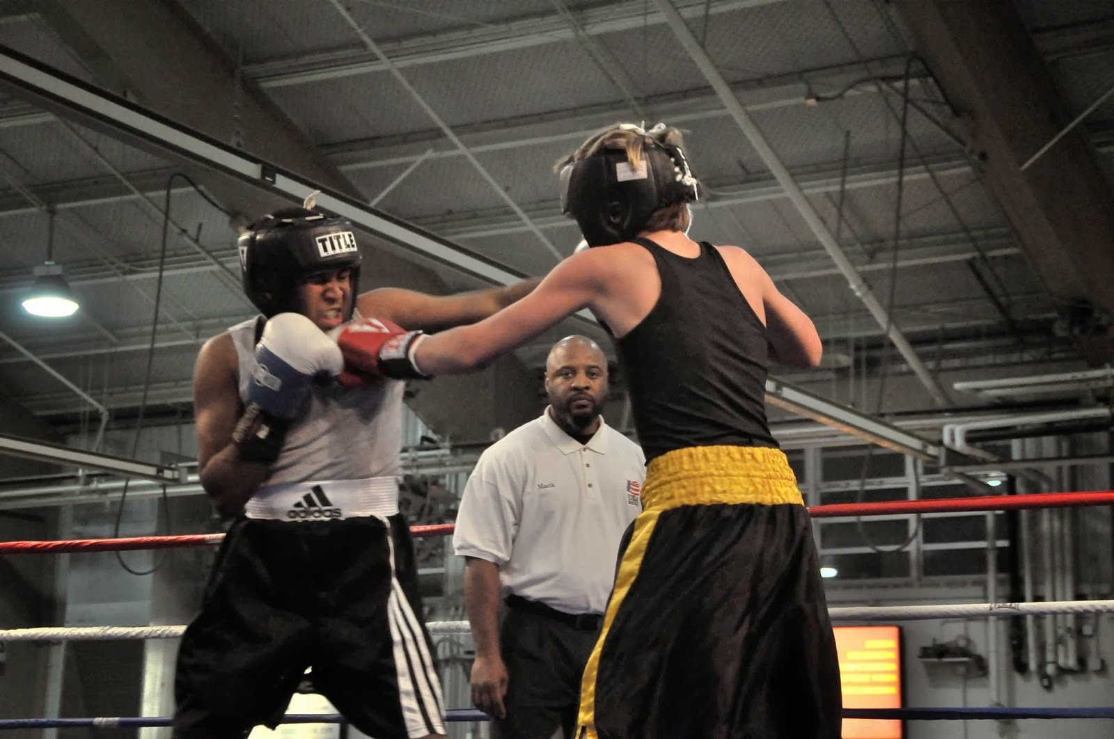 boxing along the beltway results from westminster