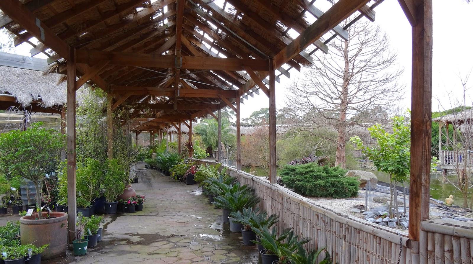 Melbourne fresh daily garden centre pond for Garden pond melbourne