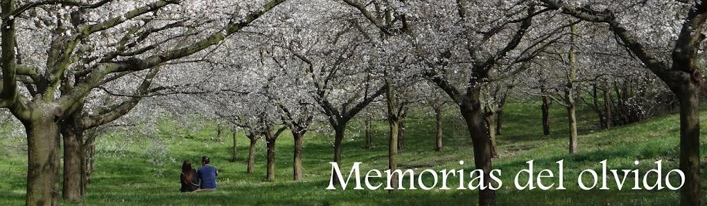 Las memorias del olvido