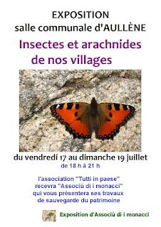 exposition 'Insectes et arachnides de nos villages' 'Associu di i Monacci'