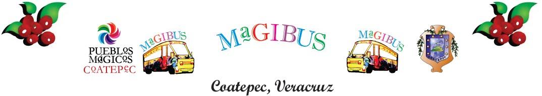 MagiBus