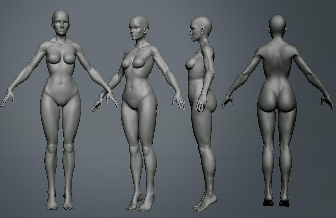 Anatomy02.jpg