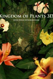 Vương Quốc Thực Vật - Kingdom Of Plants 3d