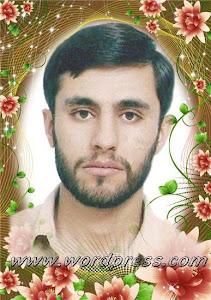 گل زیبای بلوچستان