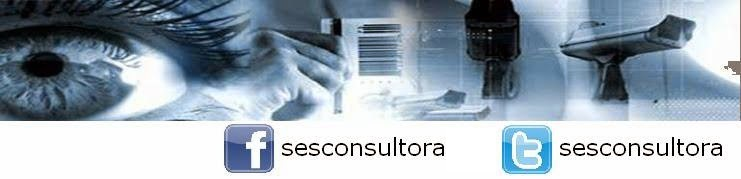 SES. CONSULTORA