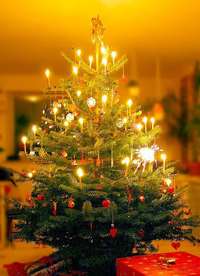 Contoh Desain Pohon Natal 2013 Terbaru