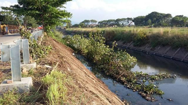 Normalisasi Sungai Cinambo Merusak Pohon Pelindung di Rancanumpang