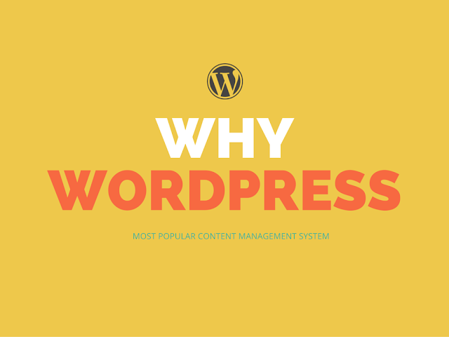What makes wordpress the most popular content management system on planet