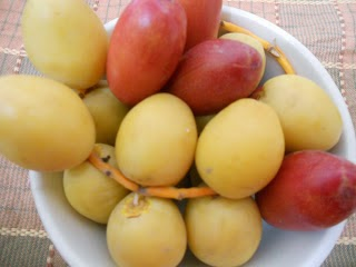 kurma segar, tamar segar, khasiat buah kurma,kelebihan buah kurma