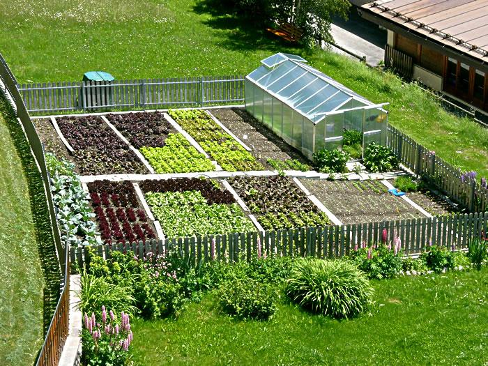 Cohousing siamo noi 3 giardino ludico e ornamentale for Orto sul terrazzo fai da te