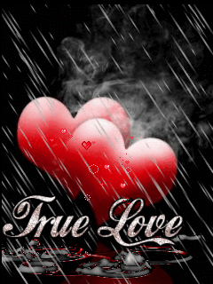 Cell Phone Wallpapers  Mobile wallpapers of love 240X320