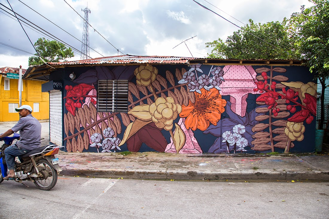 While we last heard from him in Miami, Pastel is now in the Caribbean where he was invited by the ArteSano Street Art Festival to paint a new piece in Dominican Republic.